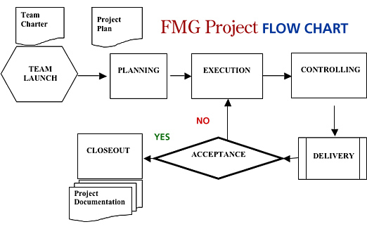 FMG Project Flow Chart